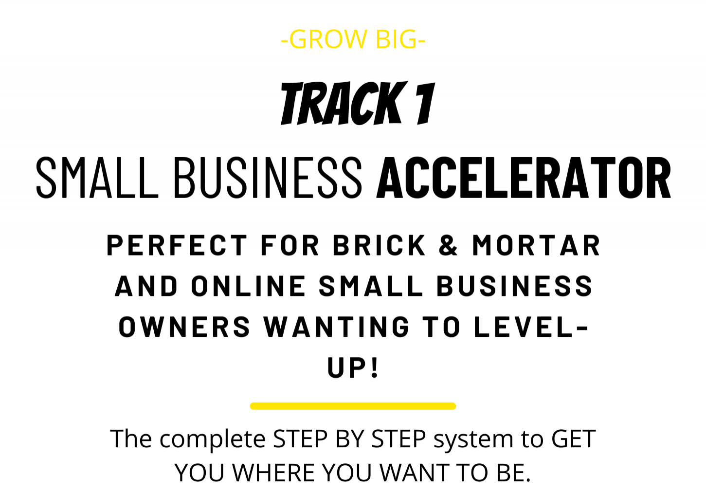SMALL BUSINESS ACCELERATOR (1)